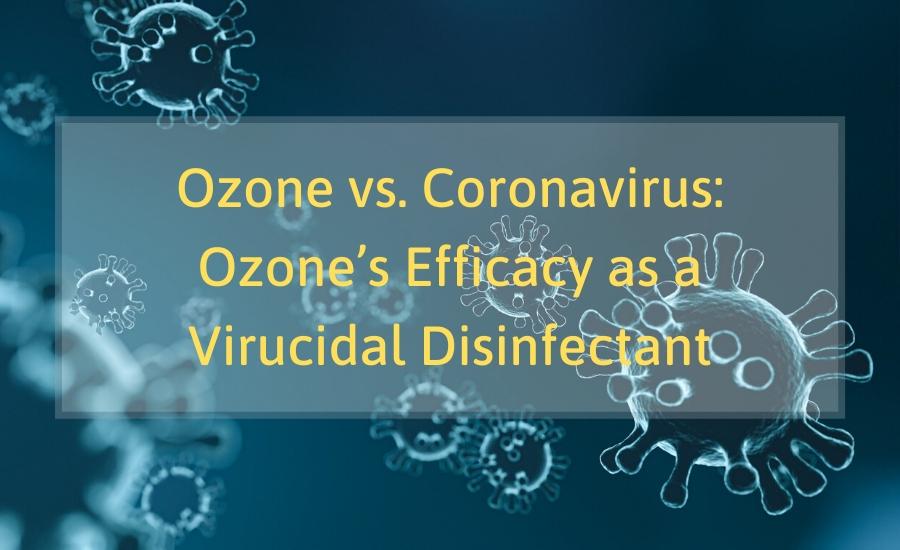 UV And Ozone Disinfection Machine kills viruses